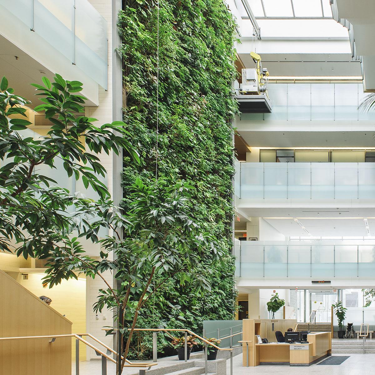 verticale tuin kantoor