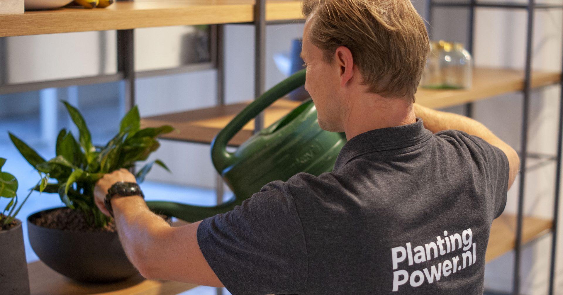 professioneel plantenonderhoud