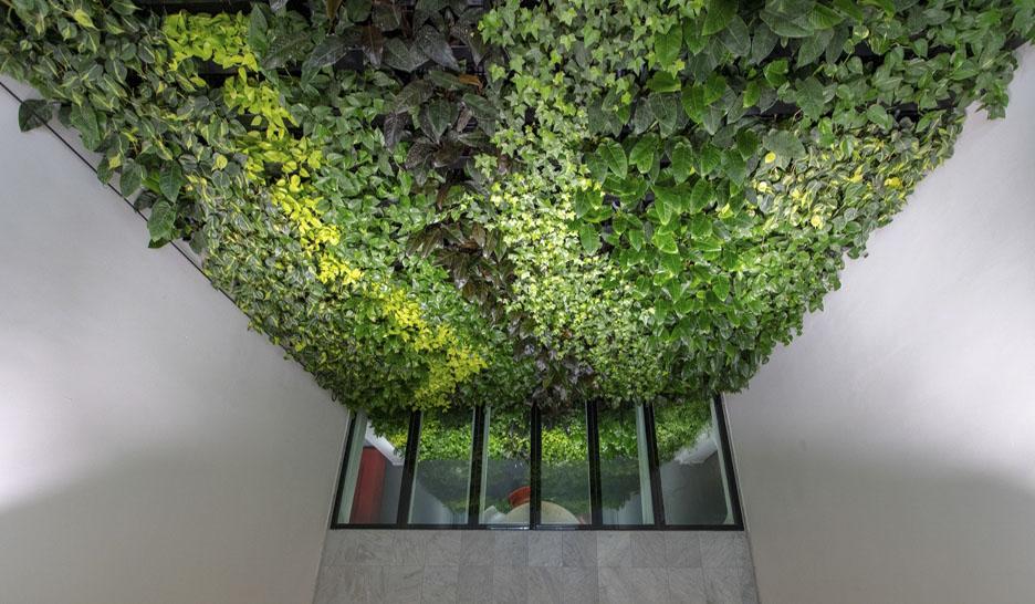 Grote plantenwand in het kantoor